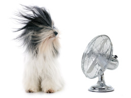 Why is my air conditioner blowing hot air after running a long time? venice florida