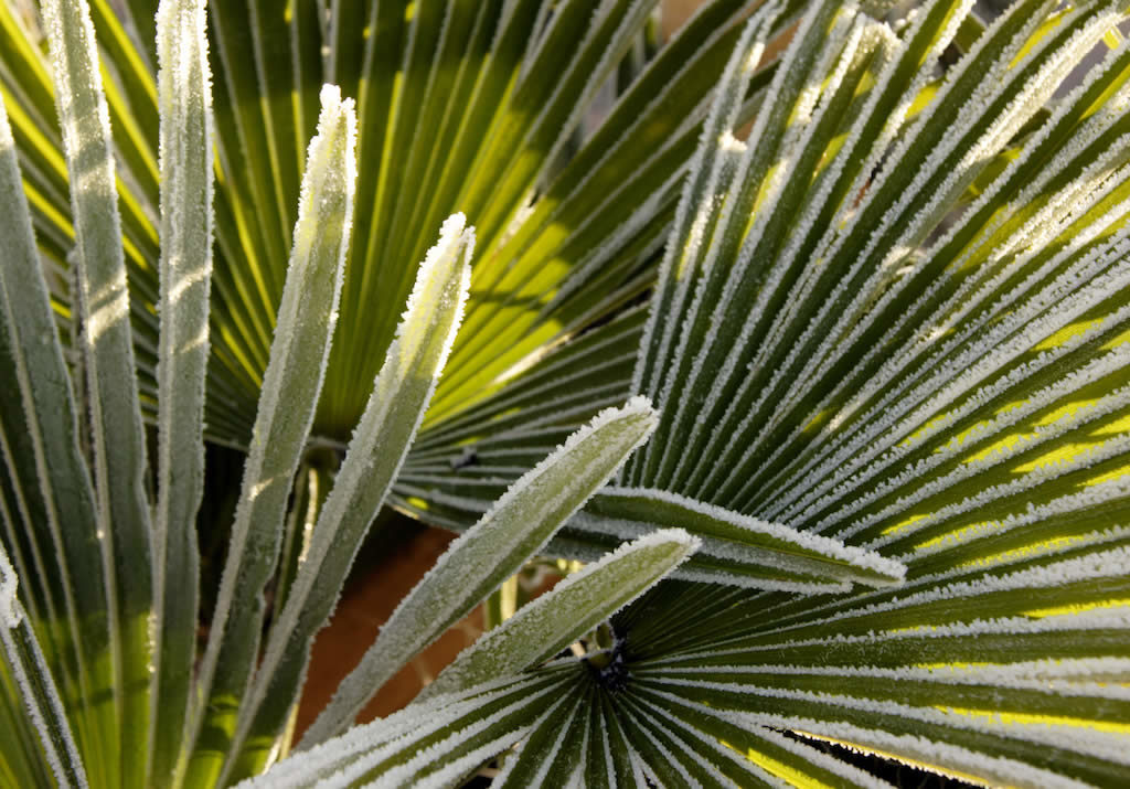 Cold In Florida? Better Check These Things Before Turning On Your Heater!